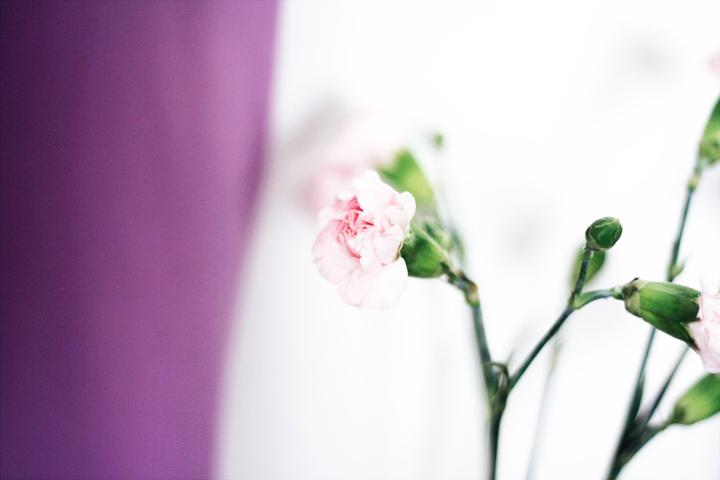 blommor på sminkbord