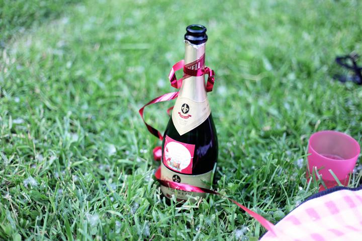nina picknick by emmas vintage