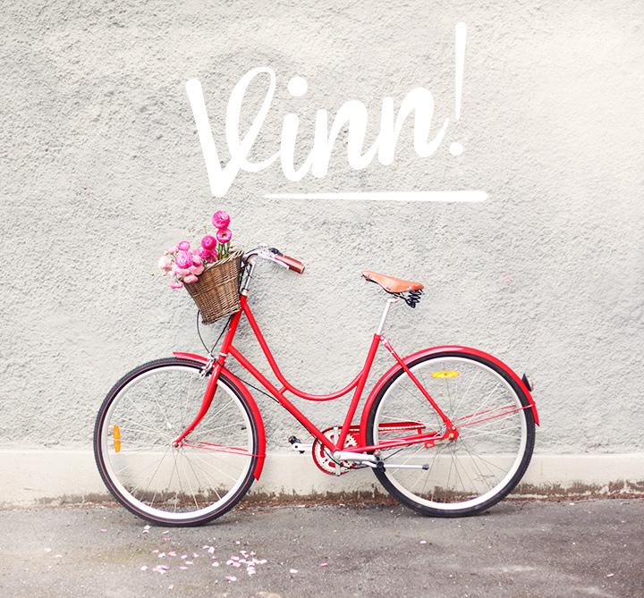 vinn2