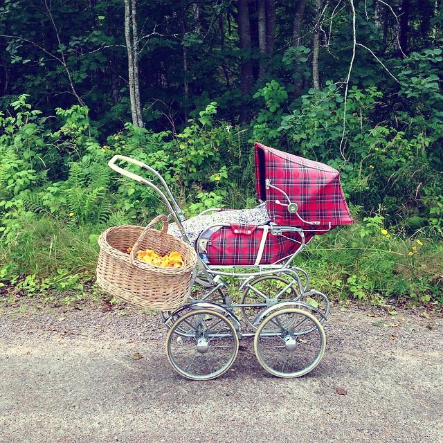 barnvagn retro svamp kantareller svampkorg