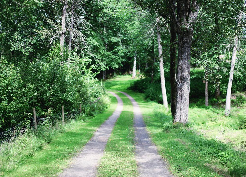 skog värmland emmasvintage