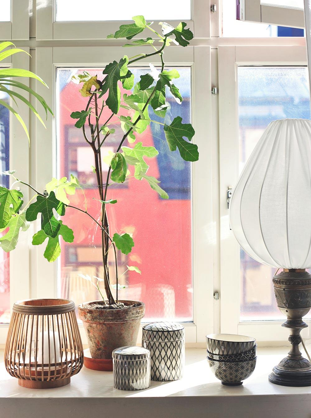 ekologisk lampa vintage inredning