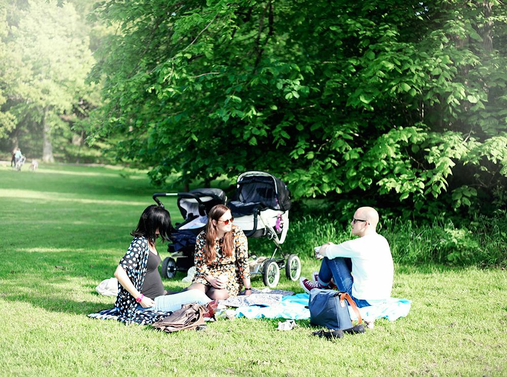 picknick slottskogen göteborg