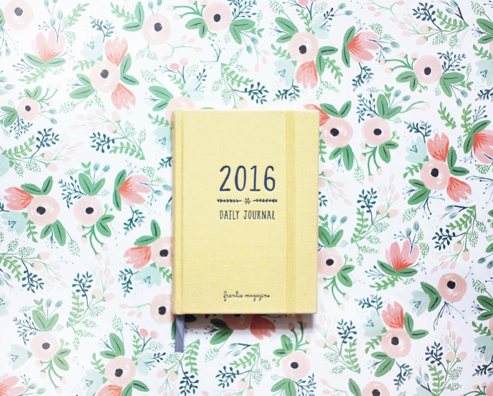 Frankie daily journal 2016