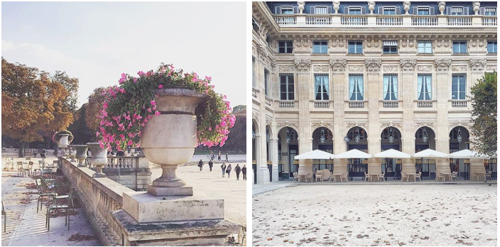 Le Palais Royal Paris Luxemburgträdgården