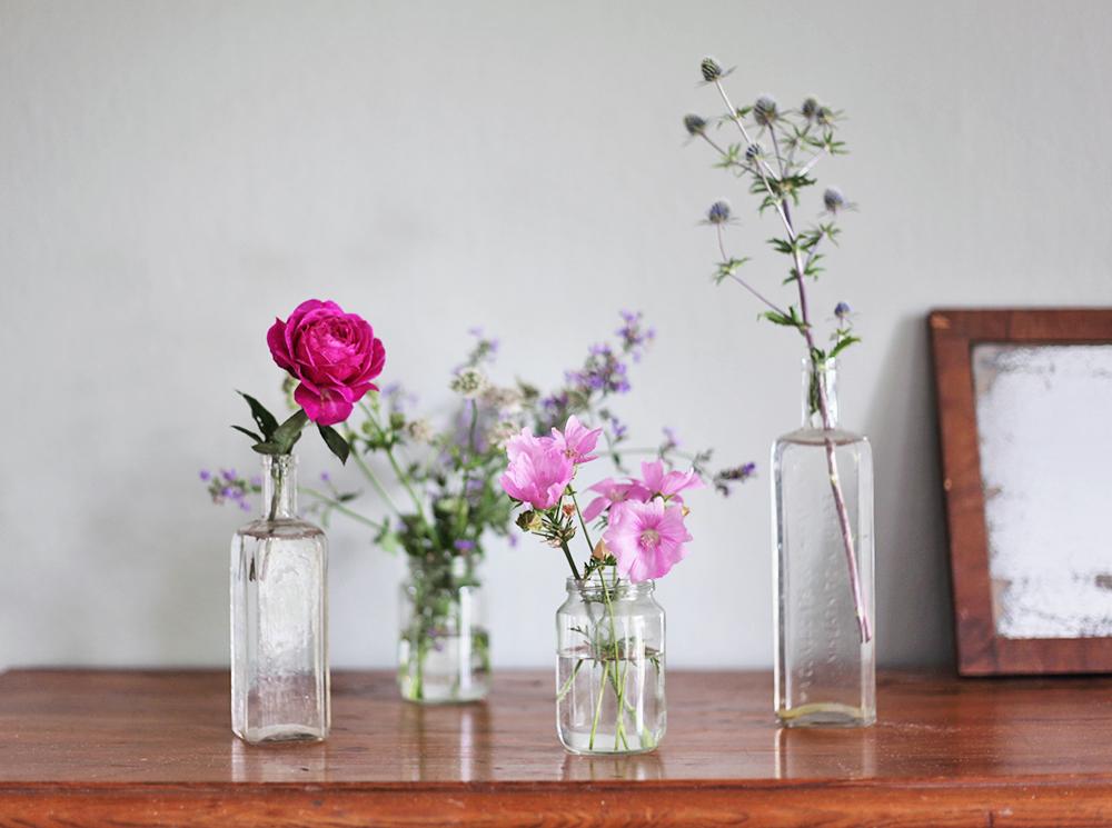 blommor trädgård torp klassisk  gotland bolltistel rosor