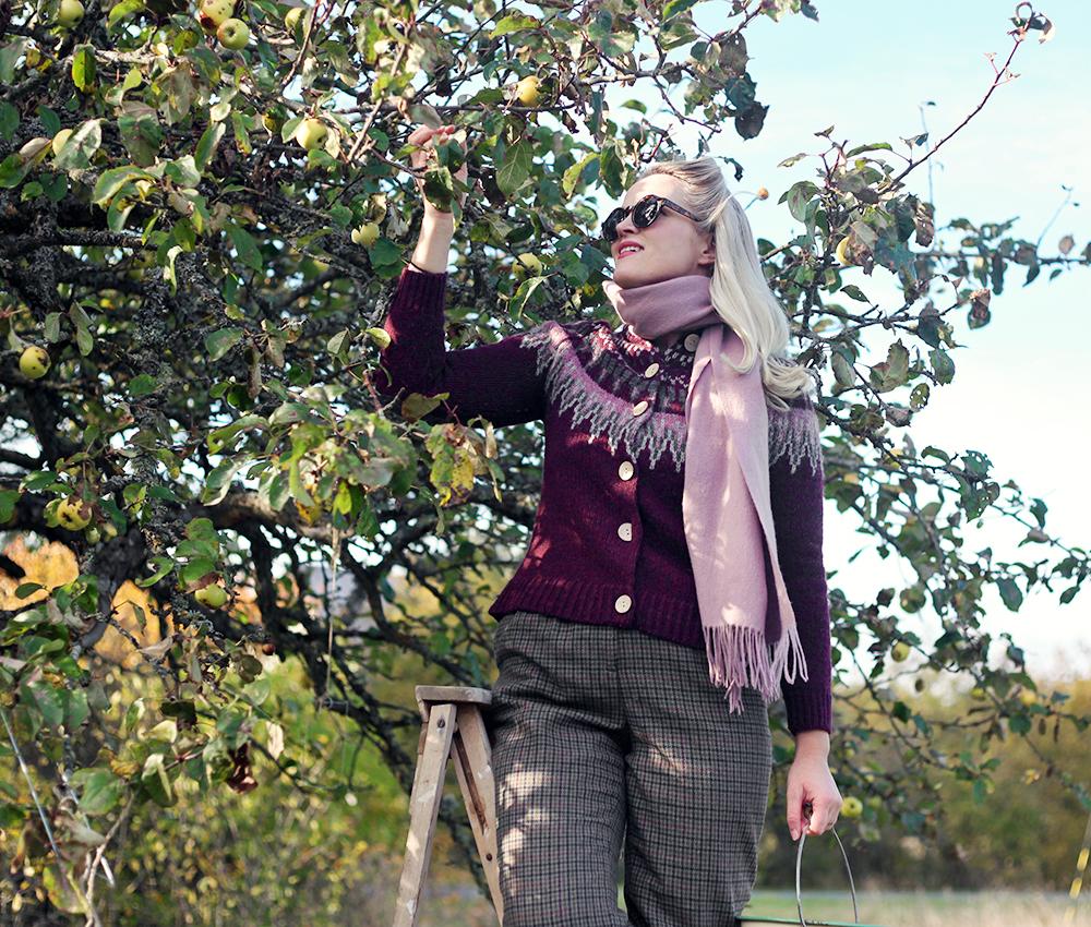 torp gotland emmasvintage äpplen äppelträd