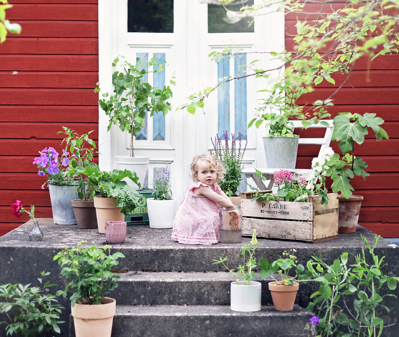 blomsterlandet gotland torp krukor odla växter trädgård