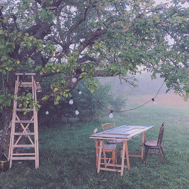 kurs inredningskurs fotografera redigera med mobilen instagram inredning torp trädgård