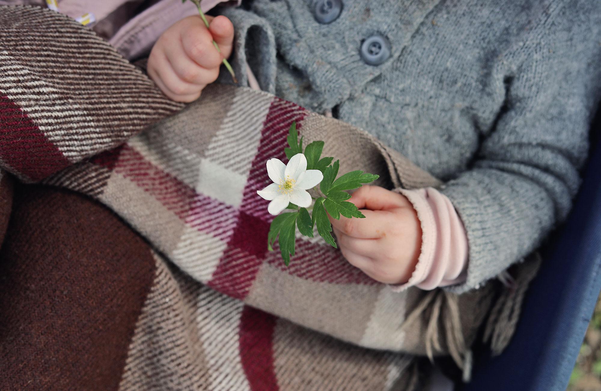 visby gotland vitsippor barn barnvagn pläd filt