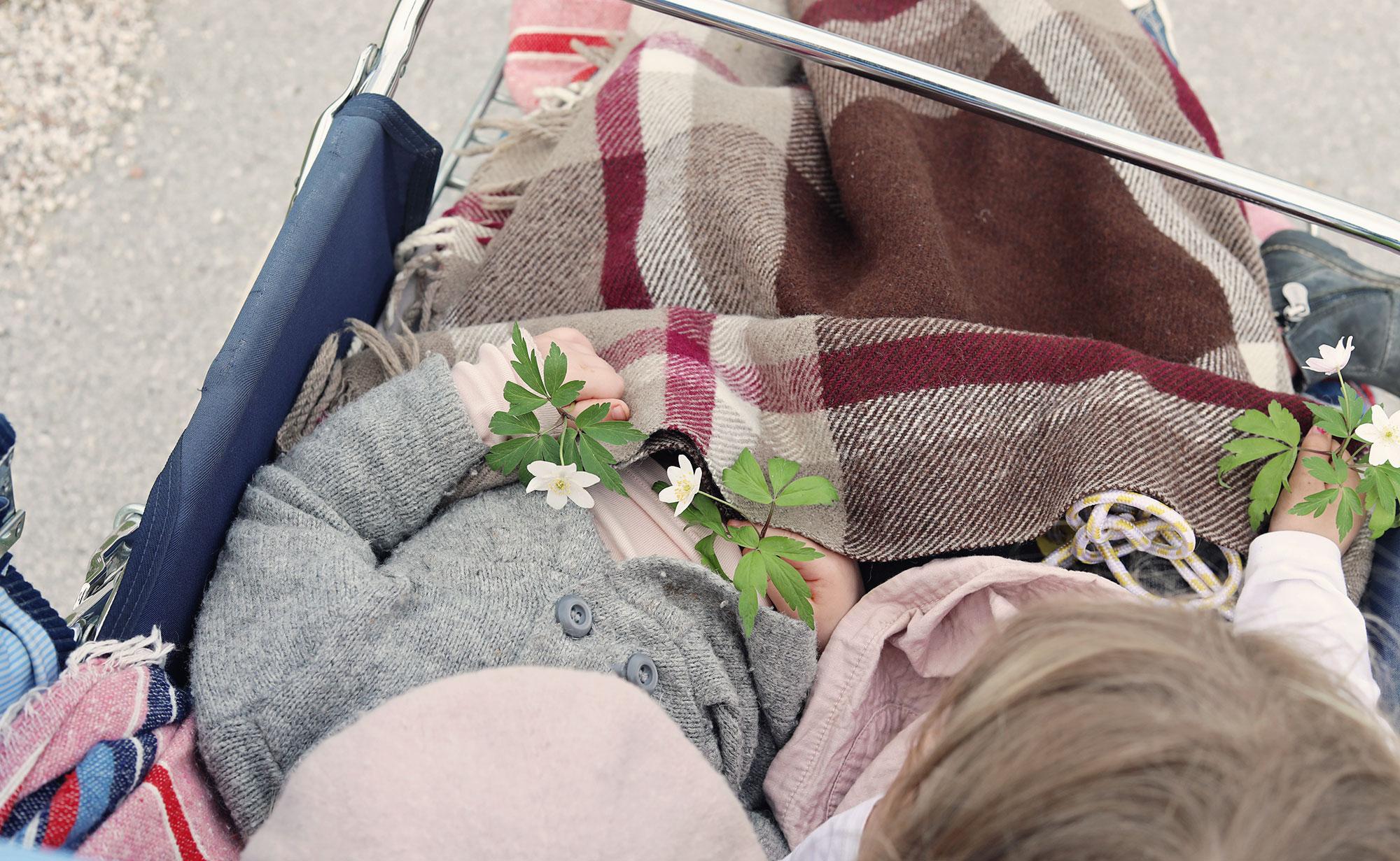 visby gotland vitsippor barn barnvagn