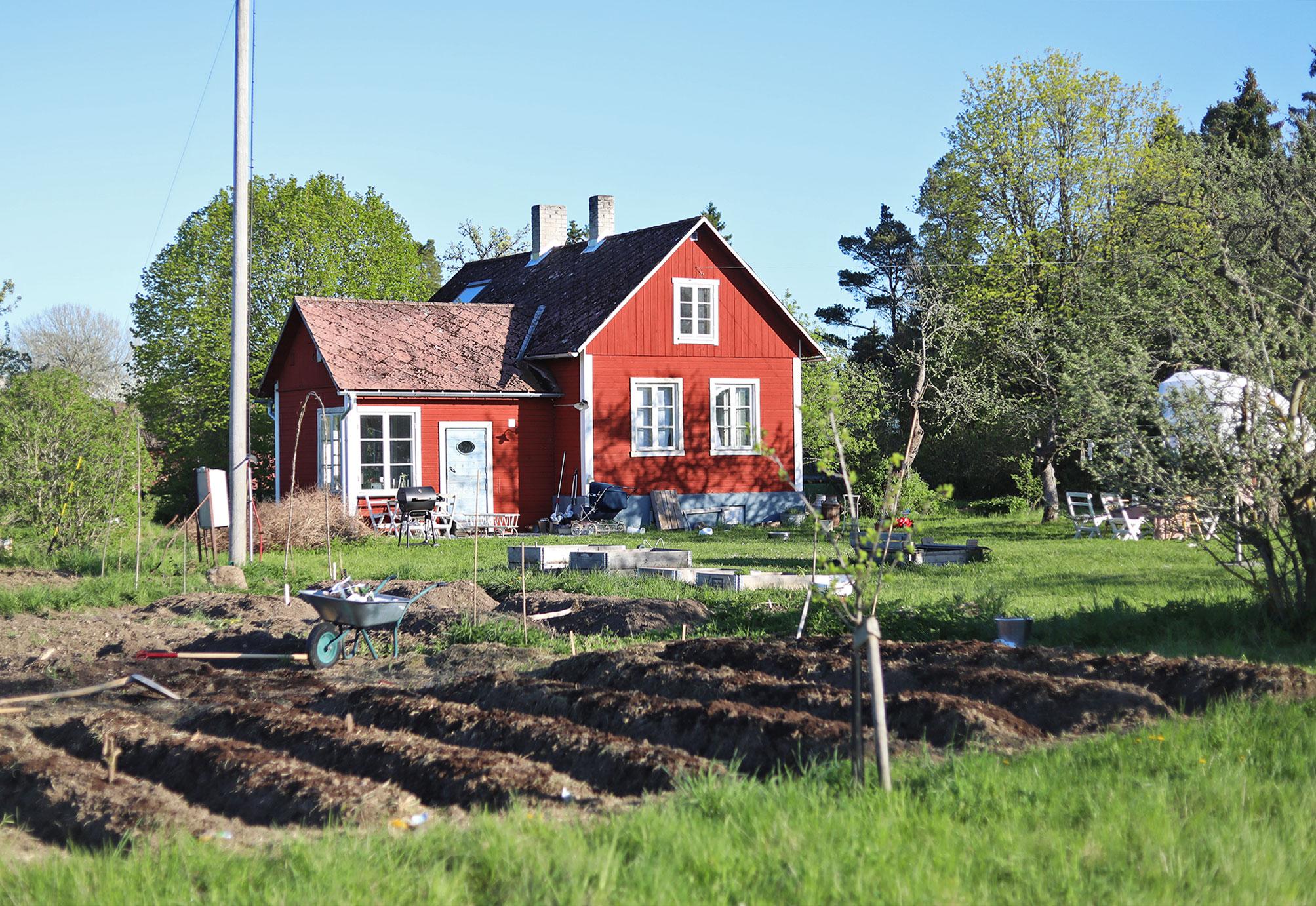 trädgårdsland trädgård Gotland torp hus
