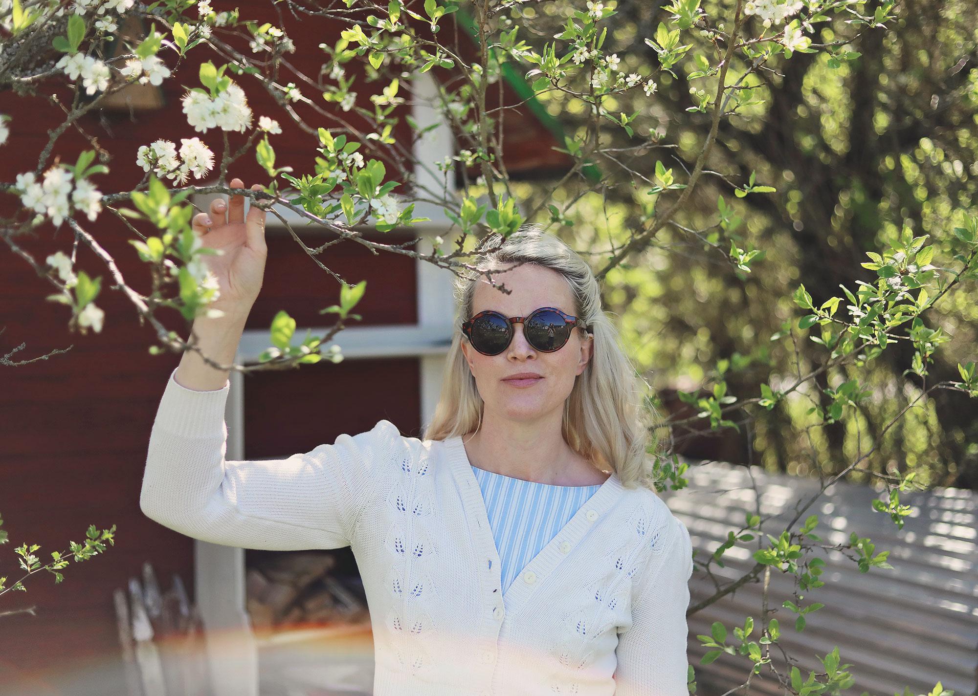 Gotland torp trädgård emmasvintage körbärsblommor plommonträd körsbärsträd