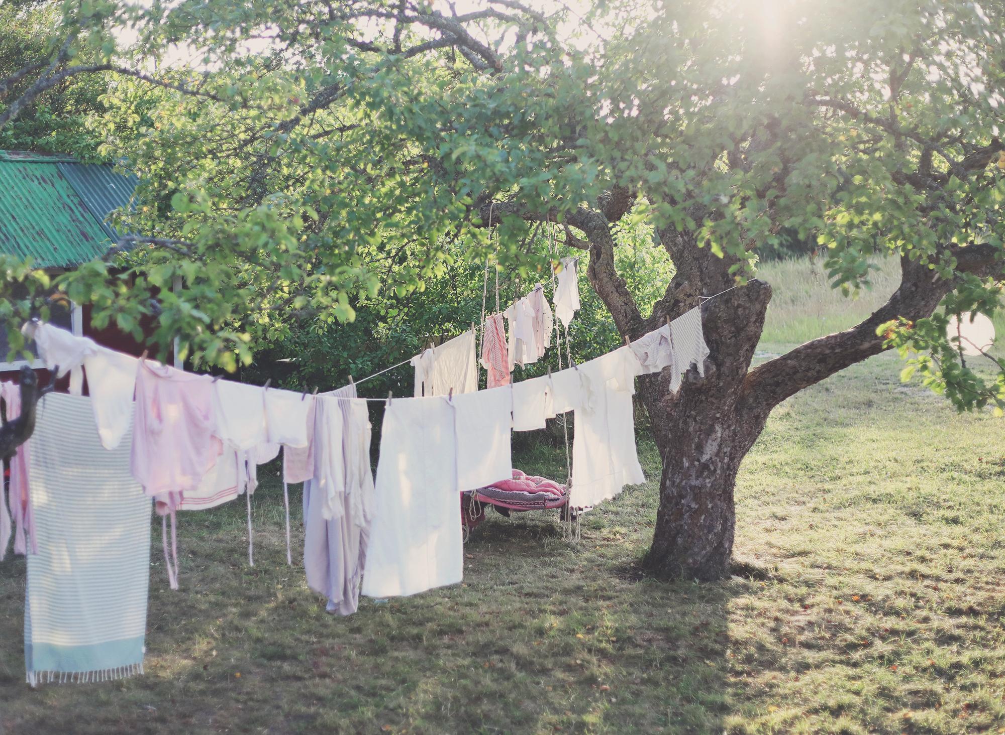 Gotland torp trädgård tvätt sommar lantligt
