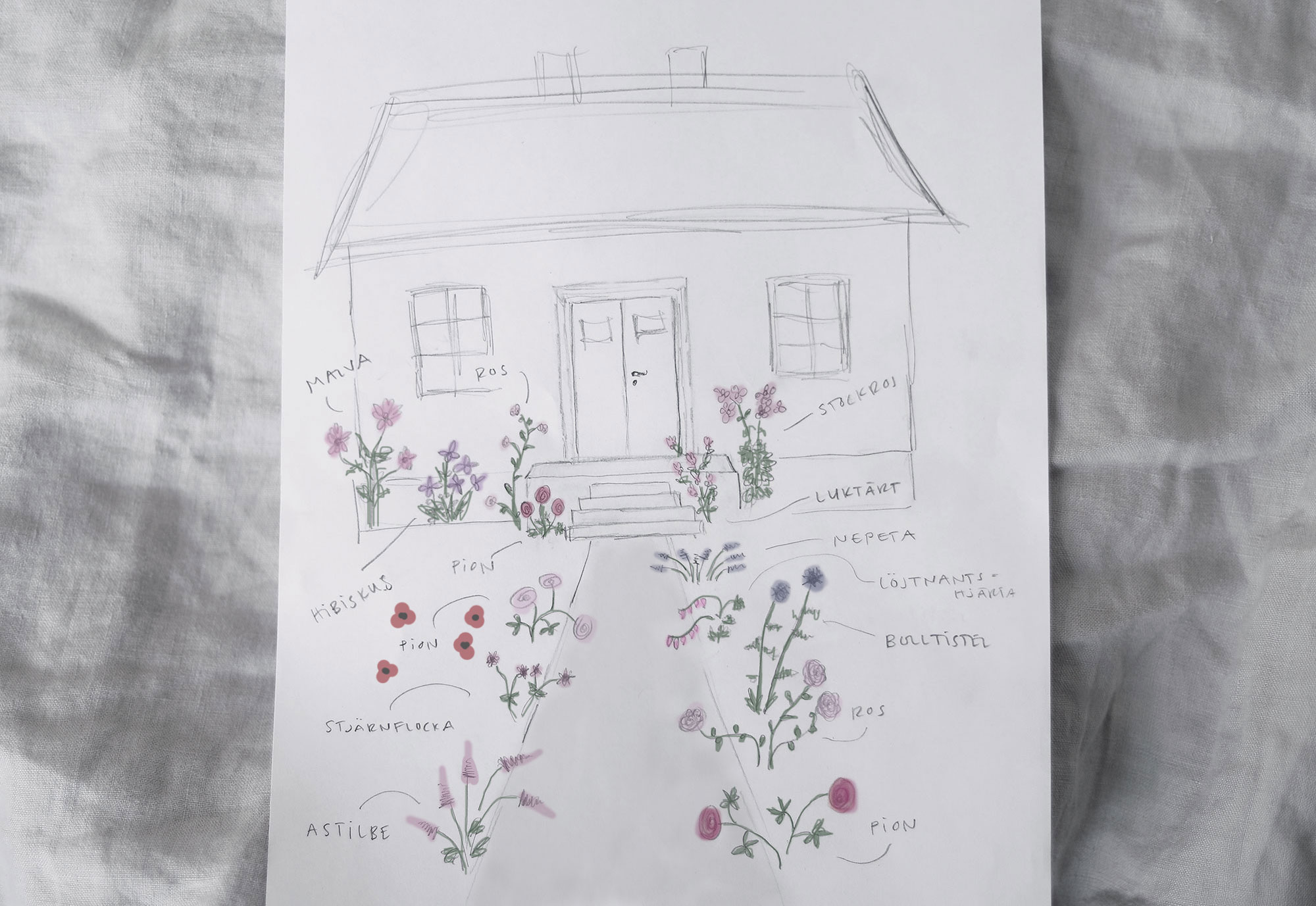 perennrabatt perenner trädgård torp skiss