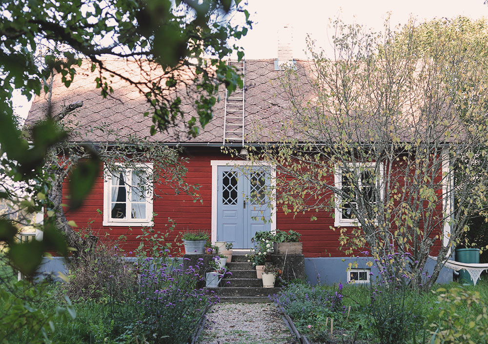 torp Gotland perennrabatt perenner trädgård höst oktober emmasundh