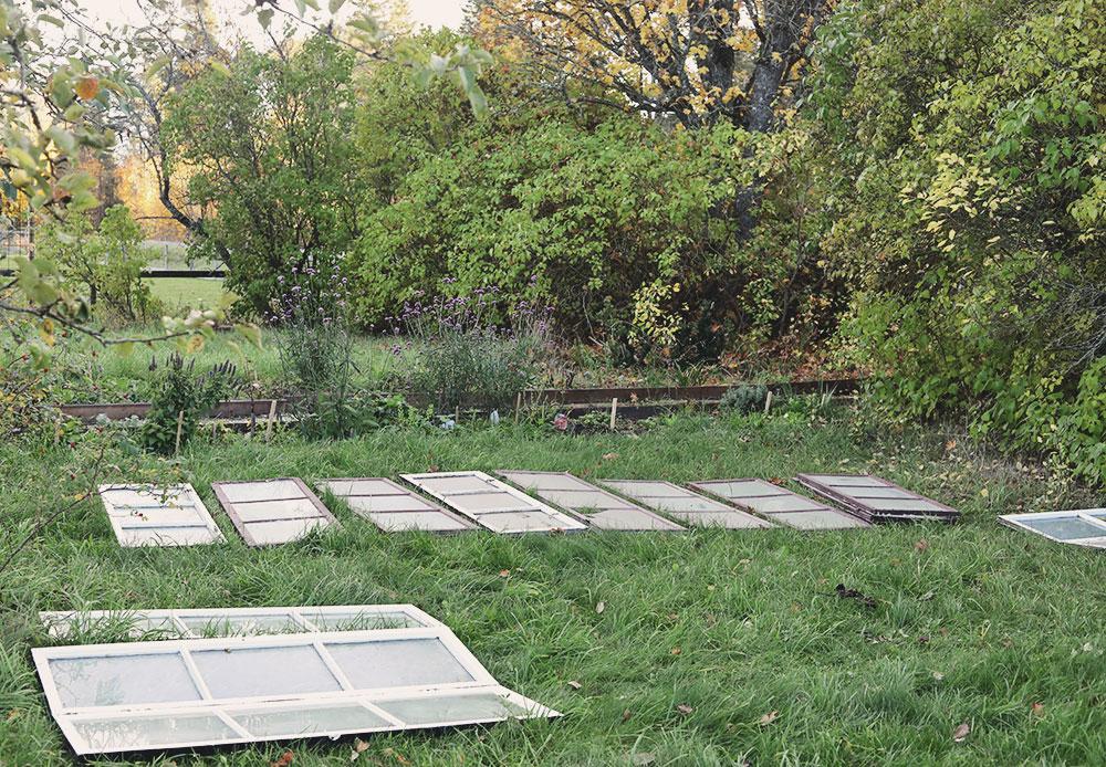 fönster växthus bygga emmasundh